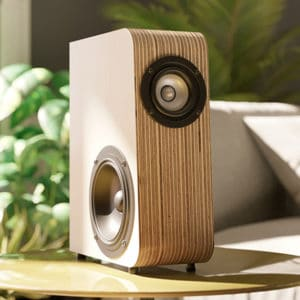 A small audio speaker made from layers of Birch Plywoodr